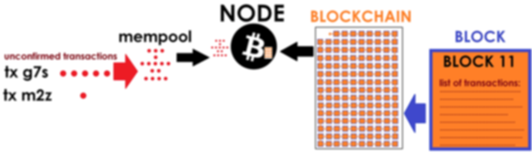 bitcoin node.png