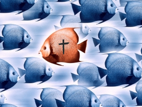 As Christians We're Swimming Upstream