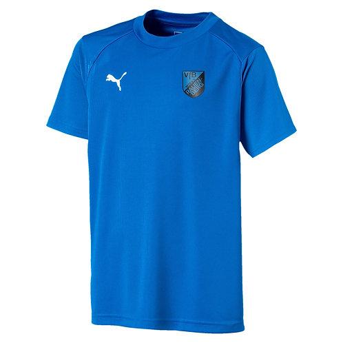 WS-VFB Liga Training Tee 655308-002