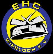 01_EHC Wiesloch logo Cutpath.png