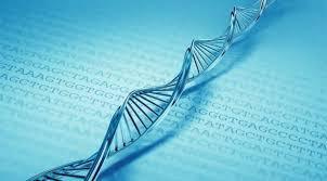 La lengua es nuestro ADN intelectual.