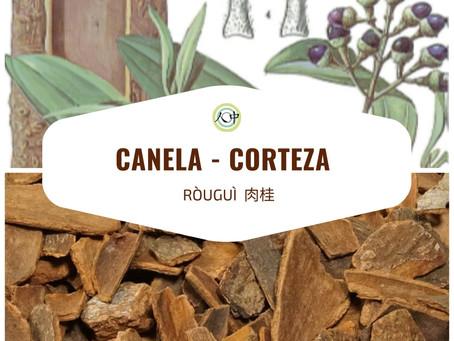 Canela (Corteza) – Ròuguì, 肉桂