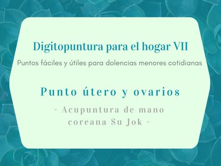 Digitopuntura para el hogar VII - Útero y Ovarios