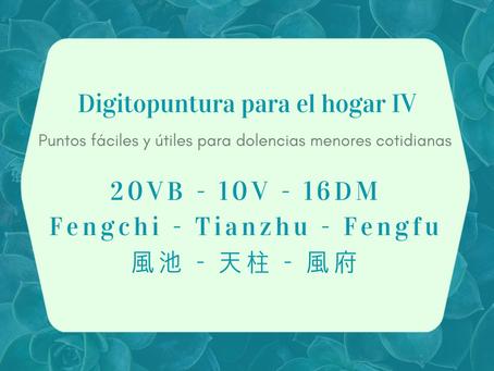 Digitopuntura para el hogar IV - 20VB - 10V - 16DM