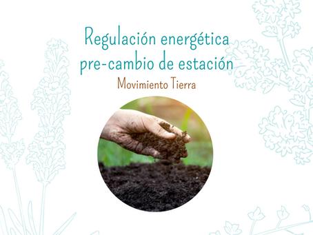 Regulación energética pre-cambio de estación