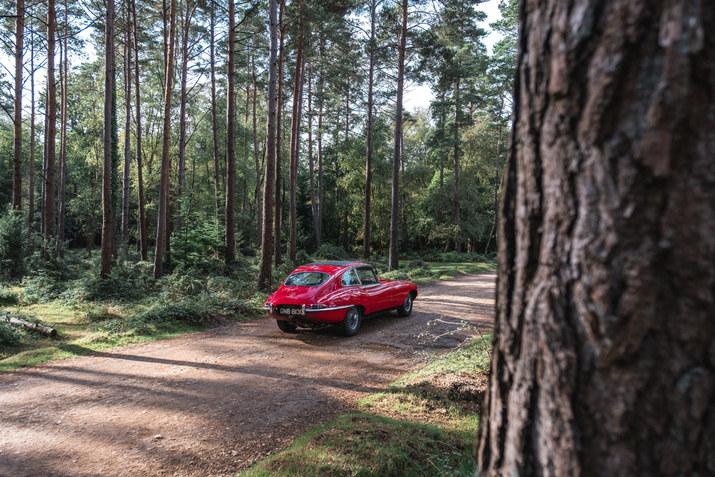 Jaguar PE Beaulieu 101019 (11 of 44).jpg