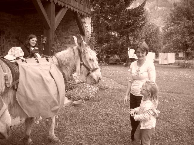 Hamacopic cheval
