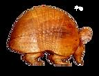 Mascotte Tatu Hamacopic