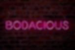 Bodacious-Logo-FINAL.png