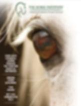 REV 8PP Cover.jpg