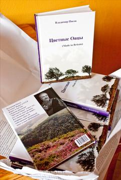 Elina_Pasok_book cover