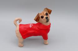Kolo the pug x terrier