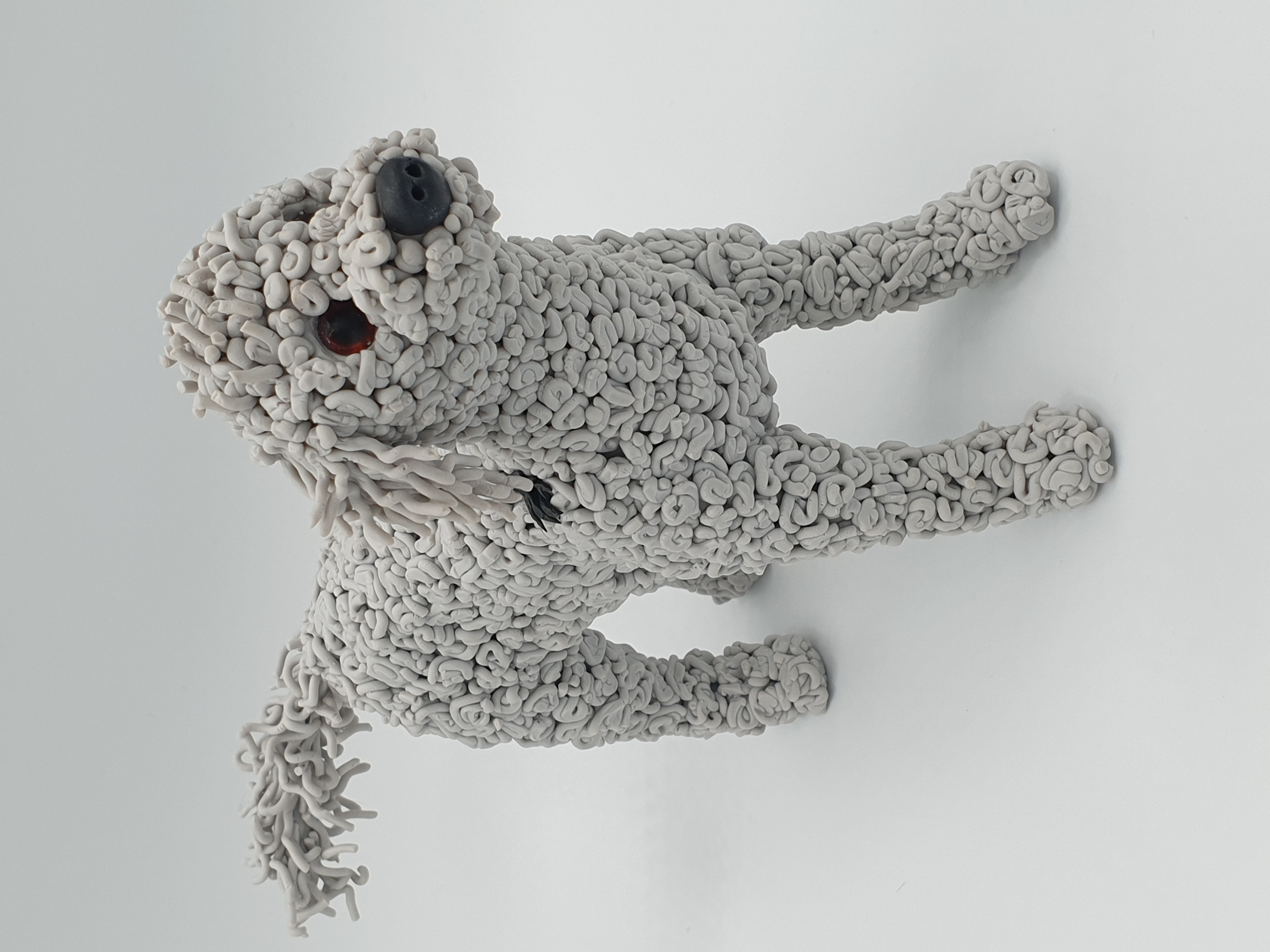 Stanley the Bedlington terrier