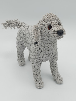 Stanley the Bedlington terrier