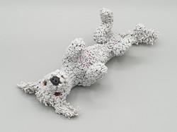 Billy the Bedlington terrier