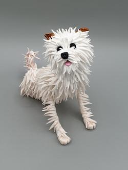Freddie the terrier cross