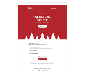 Wix holiday sale email.