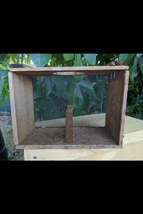 Bee Package, #122