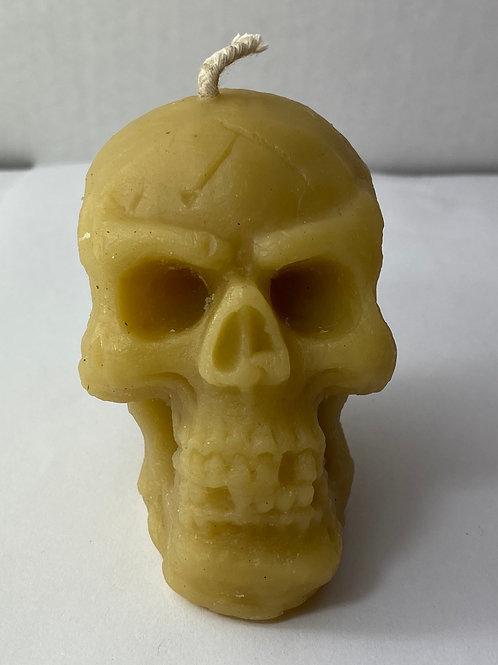 Skull, # 81