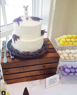 Lavender Wedding at The Dixon