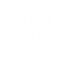 Tanssitila-1200x1200-nega (1).png