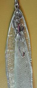 little catch.herring.detail 2.jpg