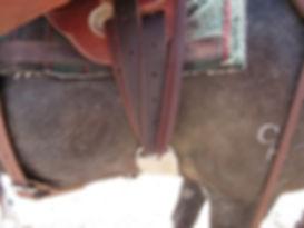 Mule Rigging 1 for Doc.jpg