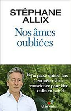 Stephane Allix Ame oubliee