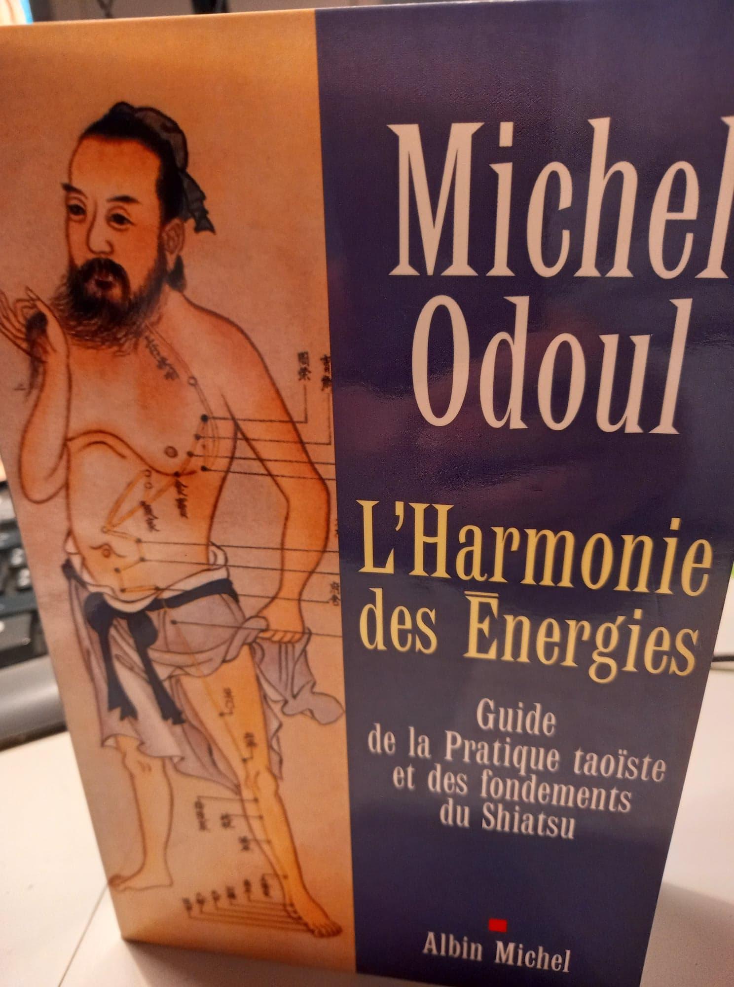 Michel Odoul, l'harmonie des Energies