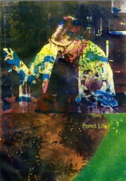 Pond Life poster
