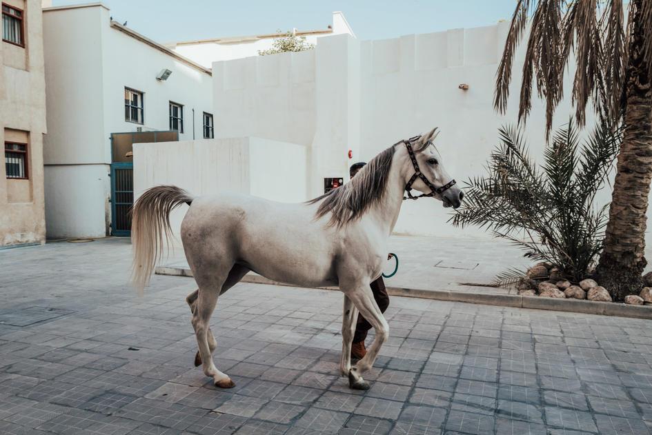 Doha-51.jpg