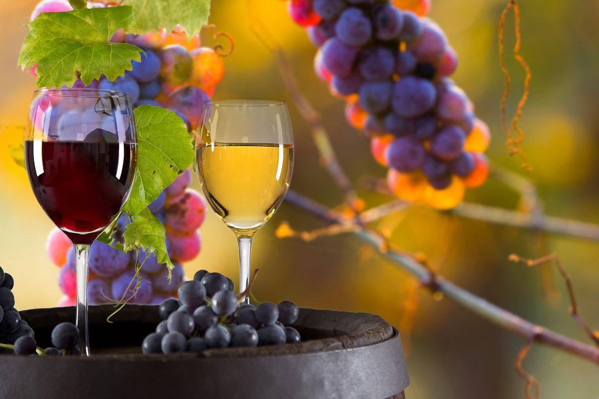 Wine Mountain.jpg