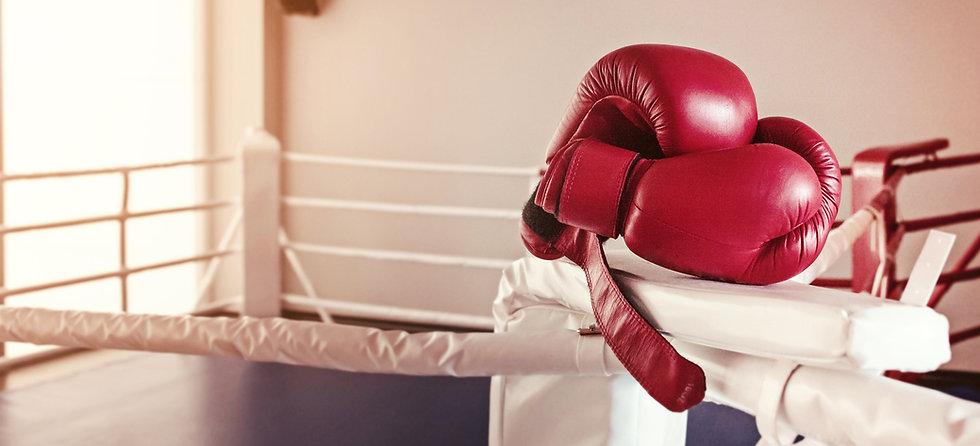 Gloves-Boxing.jpg