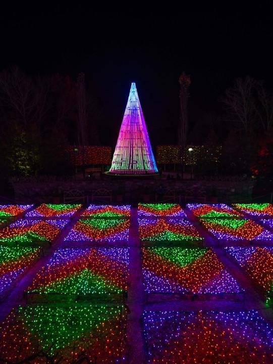 NC-Arboretum-Winter-Lights.jpg