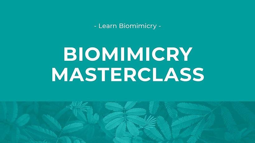 biomimicry masterclass.jpg