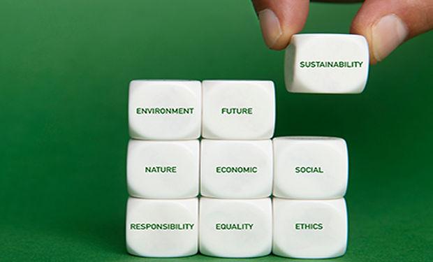 sustainability-exe.jpg
