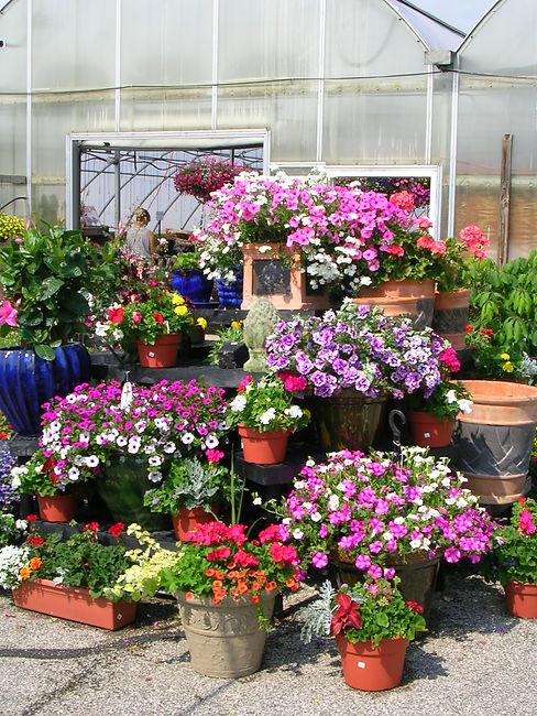 garden mart 023.jpg