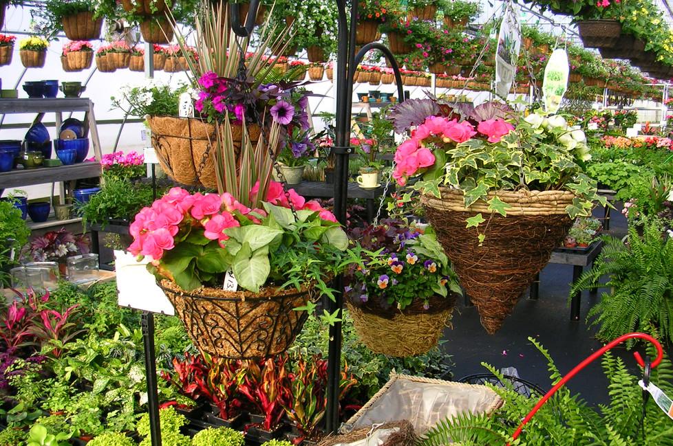 Custom Hanging Baskets