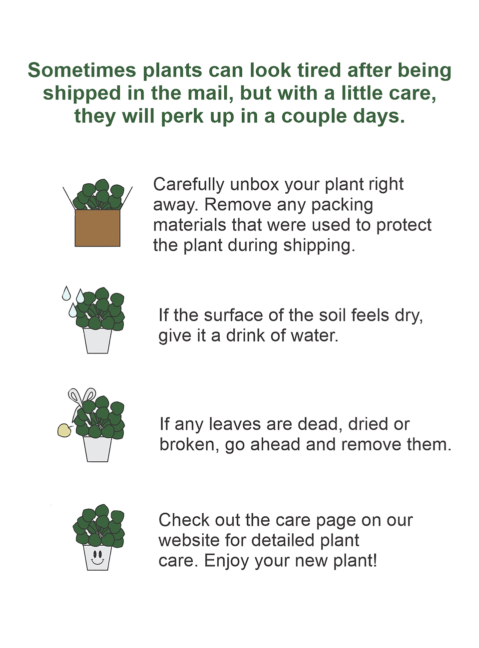 An infographic on how to unbox your houseplant