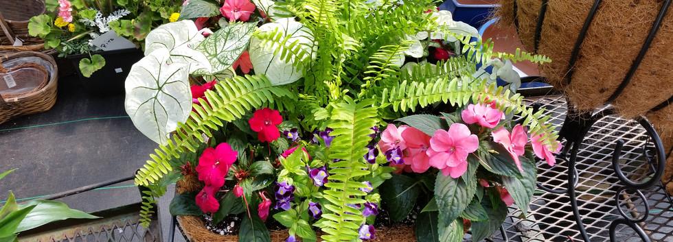 Custom Planting