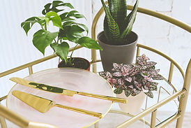 a group of houseplant on a glass and gold serving cart with a white plant and gold silverware