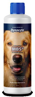 Dynavyte Big House Dog MBS