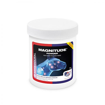 MAGNITUDE MAGNESIUM POWDER 1KG