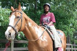 Horses help build trust