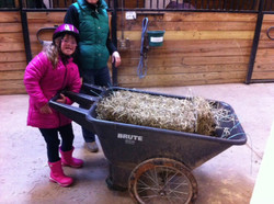Everyone loves to help in the barn