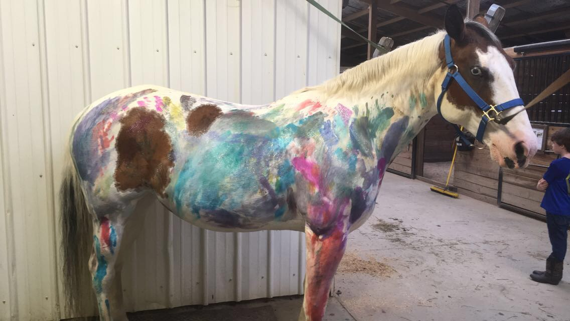 Rainbow horses at camp!