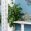 Thumbnail: Set de 2 decorativos