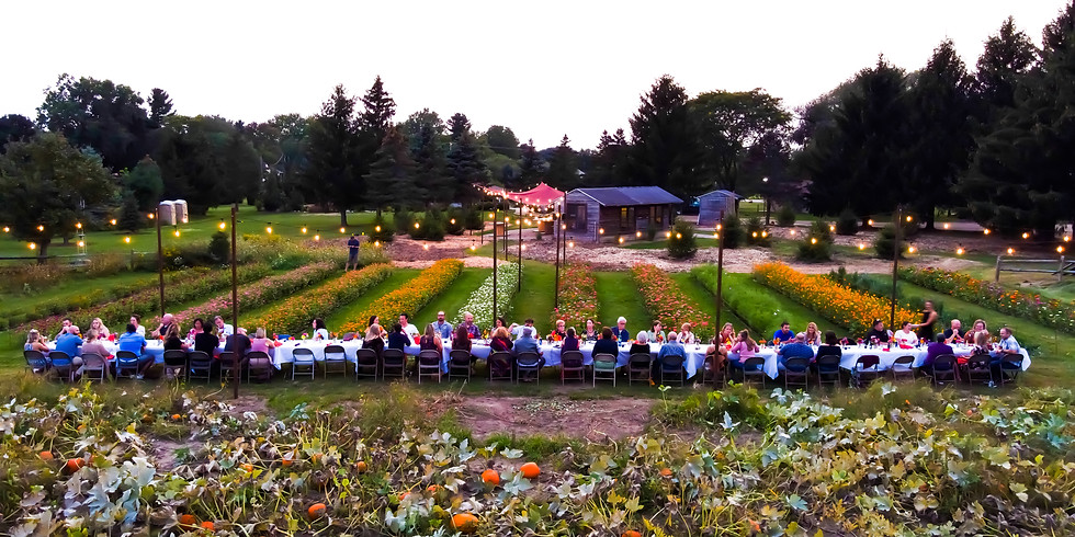 Fall Feast In The Garden