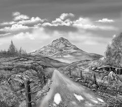 Sketching Scotland.jpg