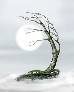 TREESCAPE.jpg